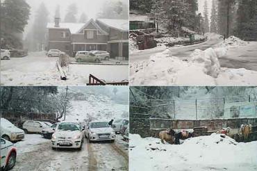 हिमाचल प्रदेश: मनाली, डलहौजी, शिमला के नारकंडा और कुफरी में ताजा बर्फबारी जारी