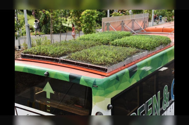 """""""Garden on the Move"""": First Public Buses with rooftop garden to ply on roads in Singapore"""