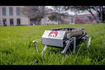 Stanford Doggo can jump, walk and flip like a dog, students share video of robot