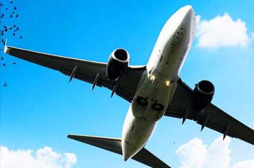 विस्तारा दे रहा है 48 घंटे की सस्ती सेल, 62 नई उड़ाने शामिल