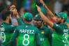 Pakistani fan files petition to ban Pak Cricket Team after the losing against India
